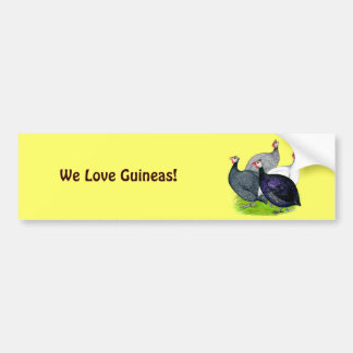 Four Guineas Bumper Sticker