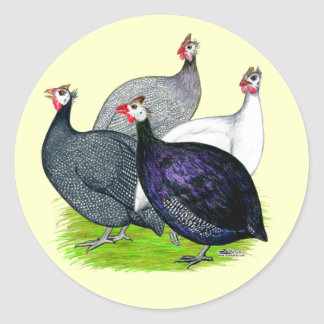 Four Guineas Round Sticker