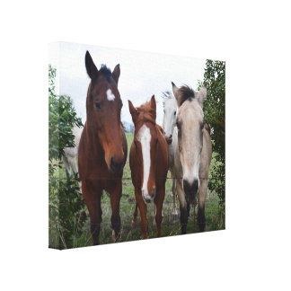 Four_Horses,_Canvas_Picture. Gallery Wrapped Canvas