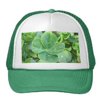 FOUR LEAF CLOVER CAP