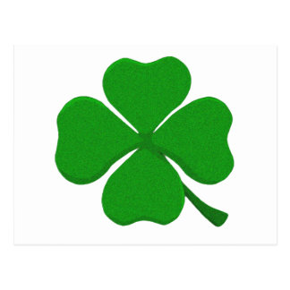 Four Leaf Clover Postcard