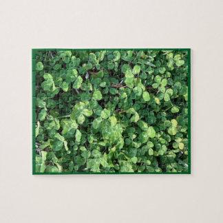 Four-Leaf Clover Puzzle