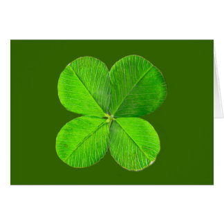 Four Leaf Clover The MUSEUM Zazzle Gifts Greeting Card