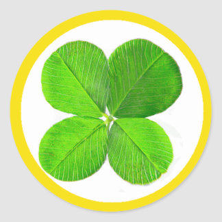 Four Leaf Clover The MUSEUM Zazzle Gifts Sticker