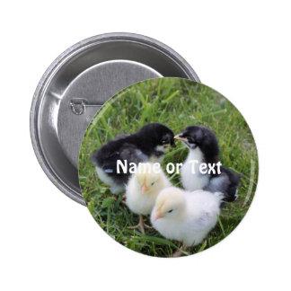 four lovely chicks 6 cm round badge