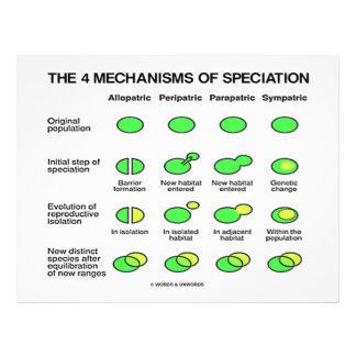 Four Mechanisms Of Speciation (Evolution) Full Color Flyer
