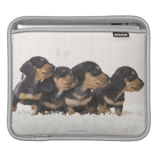 Four Mini Dachshund iPad Sleeve