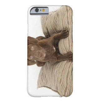 Four-Month-Old Chocolate Lab Puppy on Pillow Barely There iPhone 6 Case
