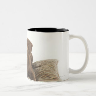 Four-Month-Old Chocolate Lab Puppy on Pillow Two-Tone Coffee Mug