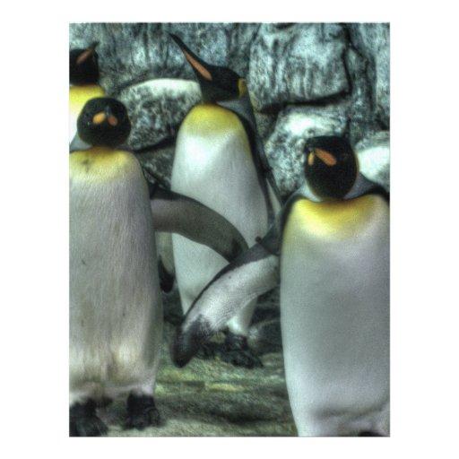 Four Penguins Flyers