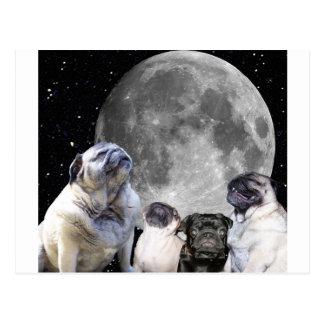 Four Pug Moon Pug Postcard