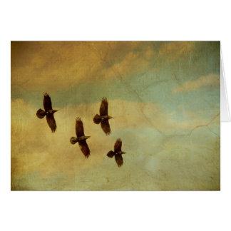 Four Ravens Flying Card