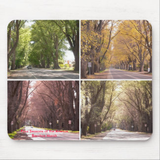 Four Seasons of the Avenue, Bacchus Marsh Mouse Pad