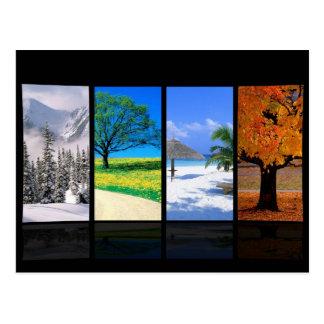 Four Seasons Postcard