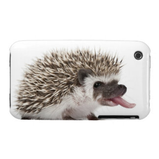 Four-toed Hedgehog - Atelerix albiventris iPhone 3 Cover