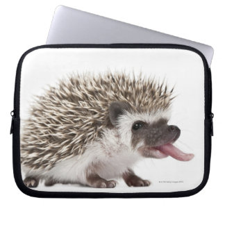 Four-toed Hedgehog - Atelerix albiventris Laptop Sleeve