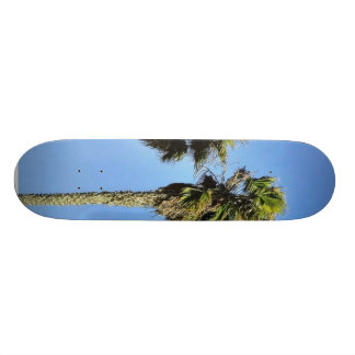 Four Trees In Point Loma Skate Deck