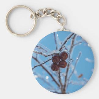 Fourty Basic Round Button Key Ring