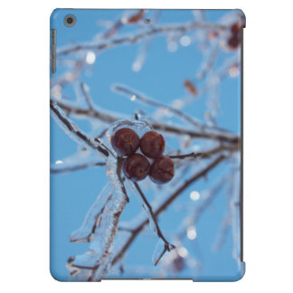 Fourty Case For iPad Air