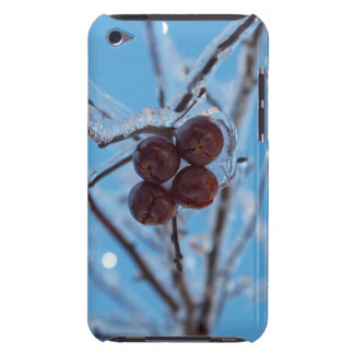 Fourty iPod Touch Covers
