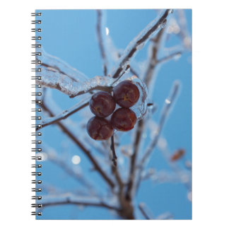 Fourty Note Book