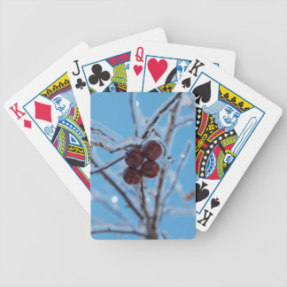Fourty Playing Cards