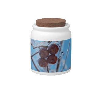 Fourty Candy Jars