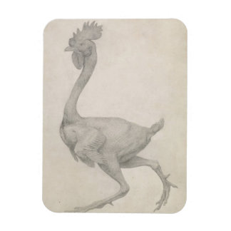 Fowl: Lateral view with Most Feathers Removed, fro Rectangular Photo Magnet