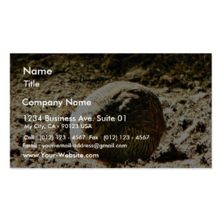 Fowl Of Some Kind Business Card