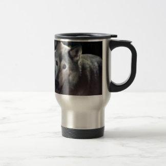 FOX at night dangerous animal cunning wild creatur Coffee Mugs