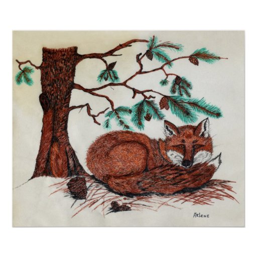 FOX Beneath Pine Bough Posters