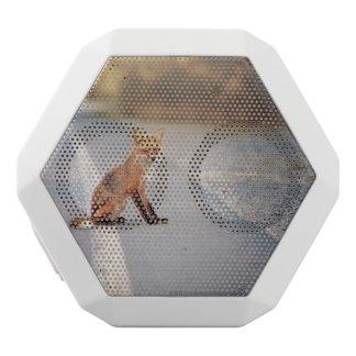 fox white boombot rex bluetooth speaker