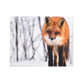 fox canvas print, foxy decor, fox cub, wall art