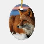 Fox Ceramic Oval Decoration