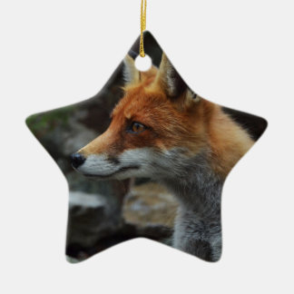 Fox Ceramic Star Decoration