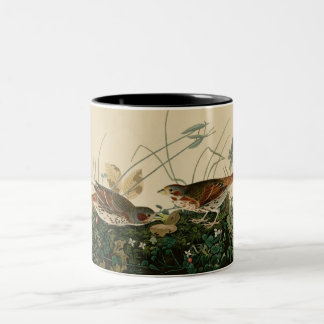 Fox colored sparrow mug