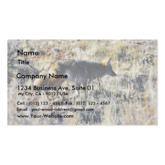 Fox Coyotes Wild Anilmal In Field Pack Of Standard Business Cards