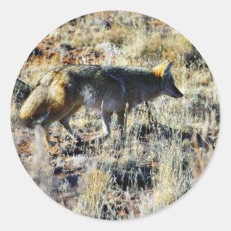 Fox Coyotes Wild Anilmal In Field Round Sticker