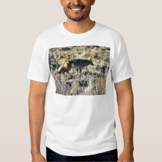 Fox Coyotes Wild Anilmal In Field T-shirts