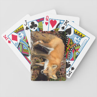 Fox Deck of Playing Cards
