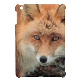 Fox Den iPad Mini Cases