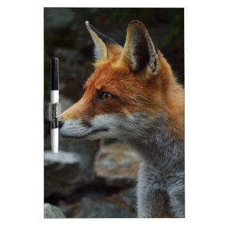 Fox Dry Erase Whiteboard