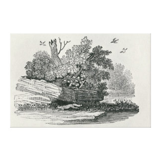Fox escaping,'The General History of Canvas Print