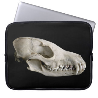 Fox / Foxes Skull Laptop Sleeve
