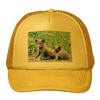 Fox Hats