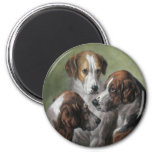 Fox Hounds Magnets