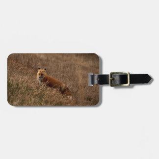 Fox in the Grass Luggage Tag