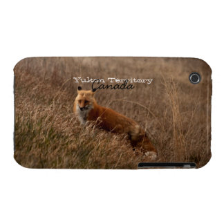 Fox in the Grass; Yukon Territory Souvenir iPhone 3 Case-Mate Cases