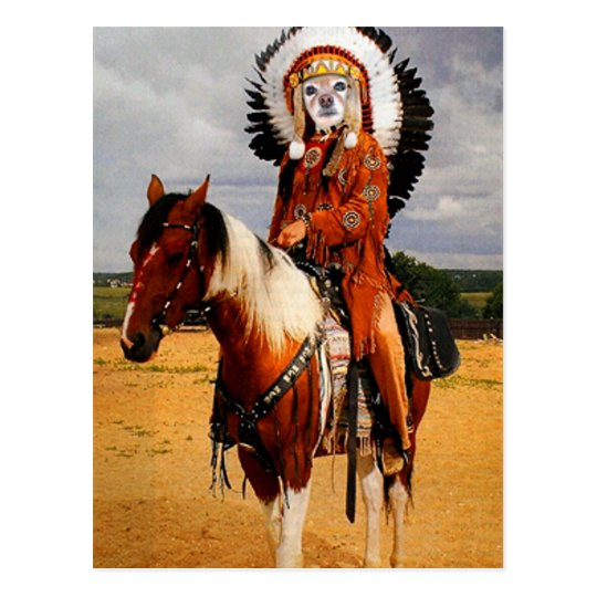 Fox Is An Indian Chief Postcard