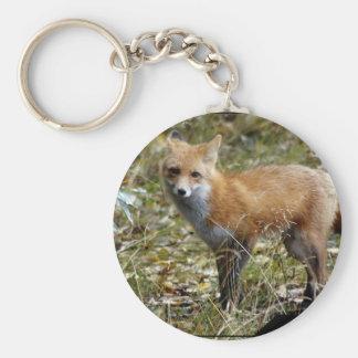 Fox  Keychain